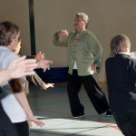Stage Tai Chi, Paul RAAB, Nov. 2012
